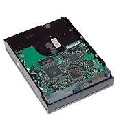 Pevný disk HP - 1 TB (LQ037AA)